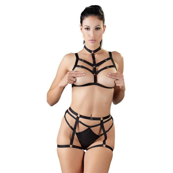 Harness-Set
